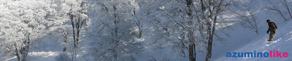 2017/1/28【野沢温泉スキー場】やまびこコースのパウダースノー・パラダイス