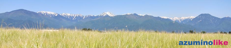 2017/5/29【安曇野、麦穂の先に山】山を背にタワワとなった麦穂は初夏を感じさせます。