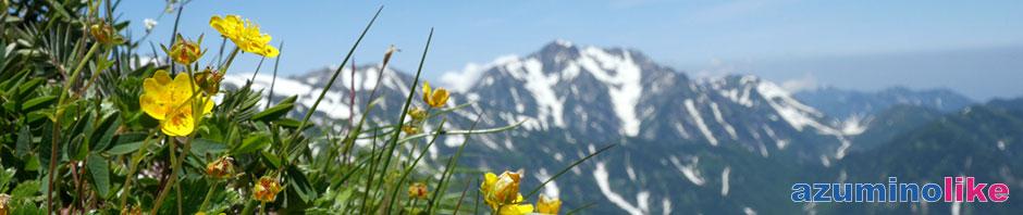 2014/7/13【針ノ木岳からの眺望】山野草の先には立山連峰の揃い踏みです。