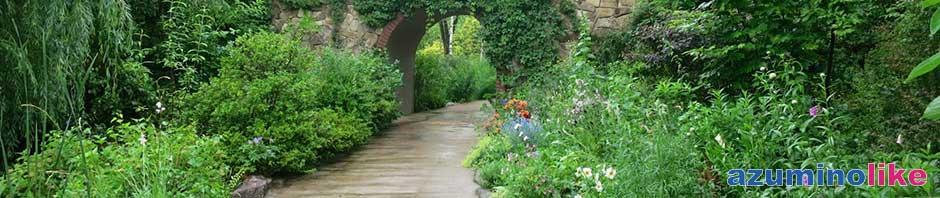 2014/6/22【草花、癒しのスポット】大町市にあるラ・カスタと言うイングリッシュガーデンは手入れされた癒し系の庭園です。