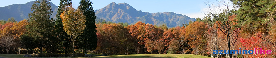 2017/11/7【国営アルプスあづみの公園の紅葉】紅葉はピークを過ぎましたが、まだまだ見ごたえがあり森と山と渓流のせせらぎに癒された1日でした。