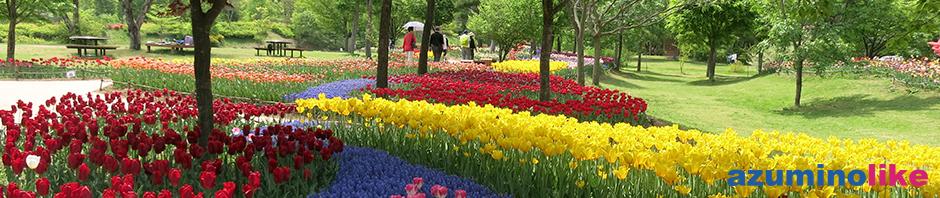 2018/5/1 【 安曇野市・国営あづみの公園】5月連休にかけての春フェスティバルは春爛漫です。