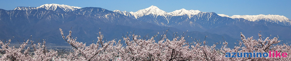 2019/4/20【弘法山の桜と北アルプス】松本・弘法山は古墳の丘全体が満開の桜で覆われ、遠景の北アルプスも映えていました。