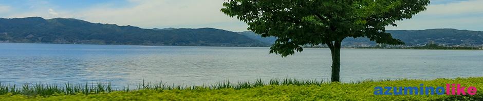 2019/5/22【諏訪湖のほとり】春の遅い諏訪湖もこの時期、緑に溢れていました。