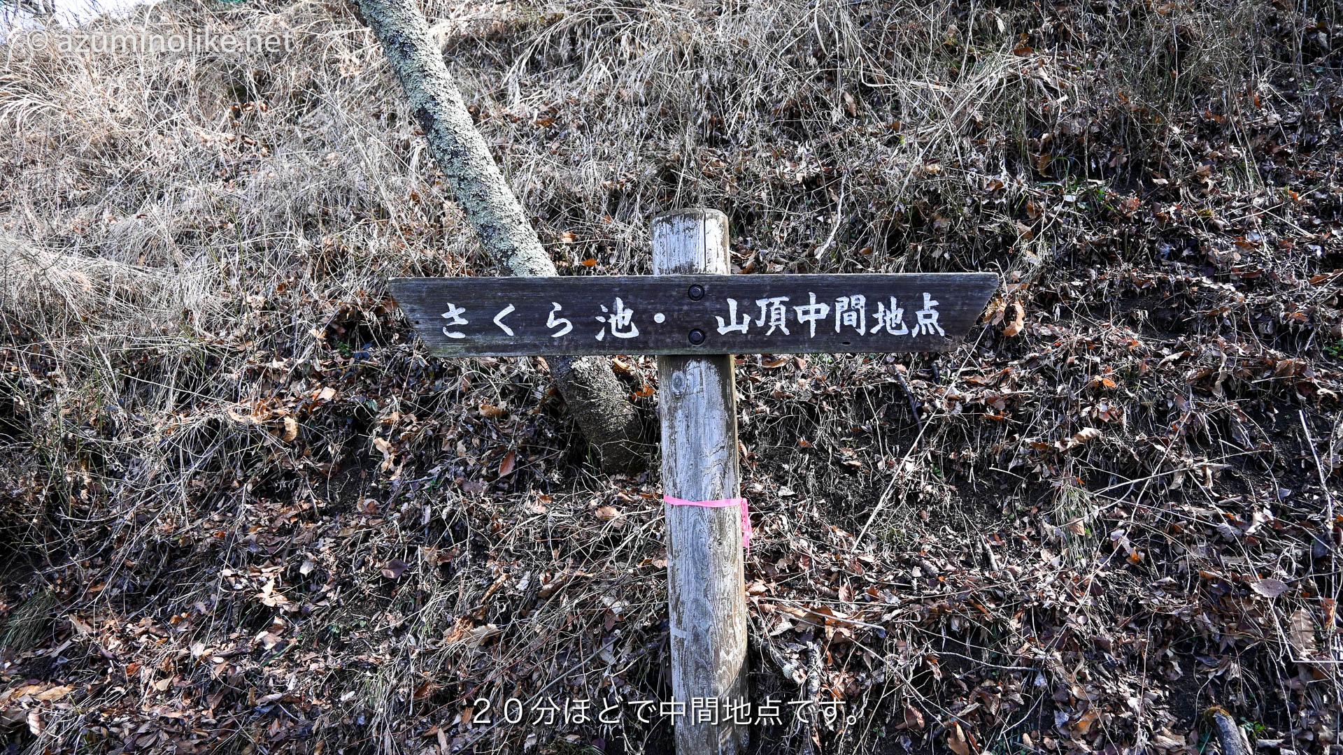 hikari312_ページ_04
