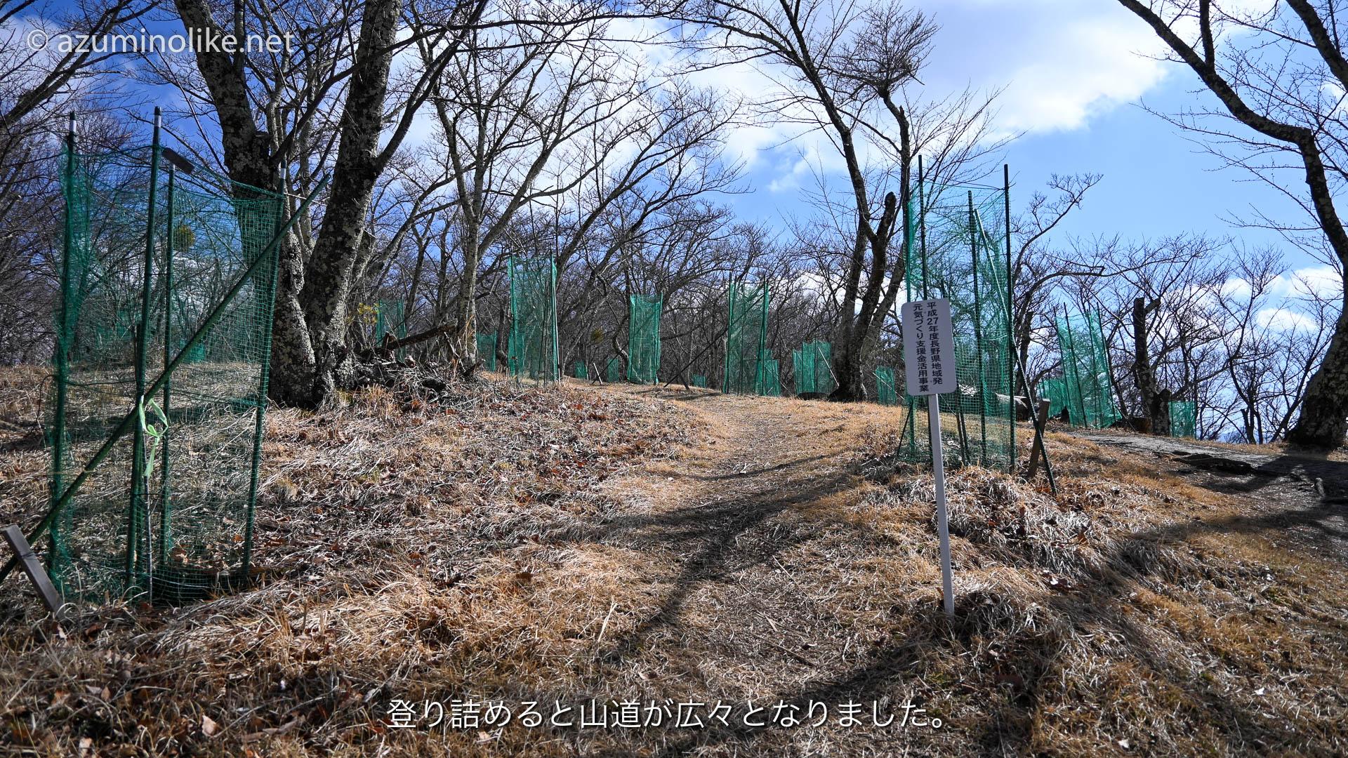 hikari312_ページ_06