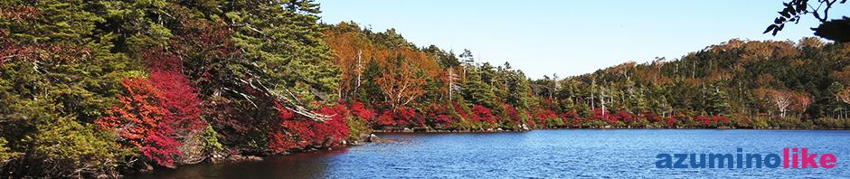 2019/10/10【紅葉の白駒の池】信州の紅葉の名所のひとつ麦草峠の「白駒の池」です。さすが澄んだ池、水面標高2,115mならではです。