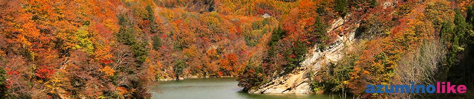 2019/11/4【奥裾花の紅葉】鬼無里村にある奥裾花自然園の入り口、奥裾花大橋から見た紅葉はドローン撮影地としても有名で、その凄さに圧倒的されました。