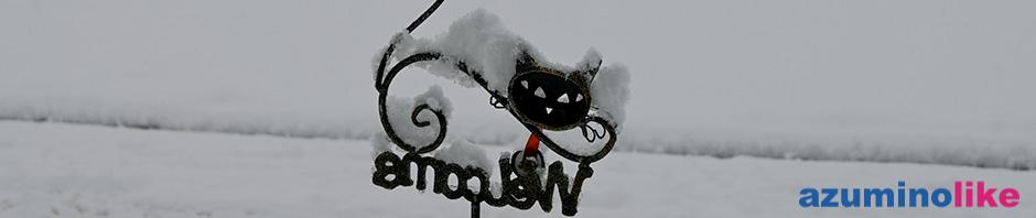 2020/1/28【雪の朝】初雪ではありませんが、ここ安曇野でもシーズン初めての積雪は10cmほど積もりました。我が家の子猫も寒そう。