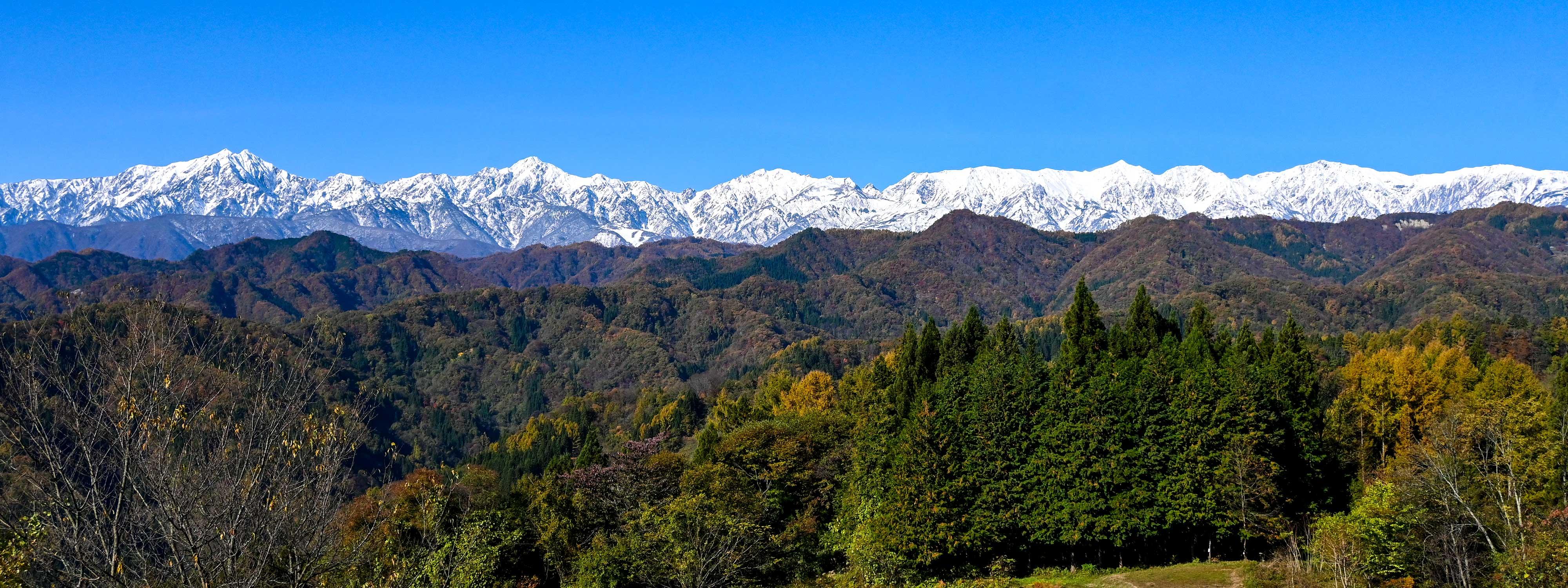 2020/11/5【小川村、北アルプス眺望】後立山連峰の圧倒的な拡がりに絶句。左から鹿島槍ヶ岳、五竜岳、唐松岳そして白馬三山と快晴のもとに揃い踏みです。